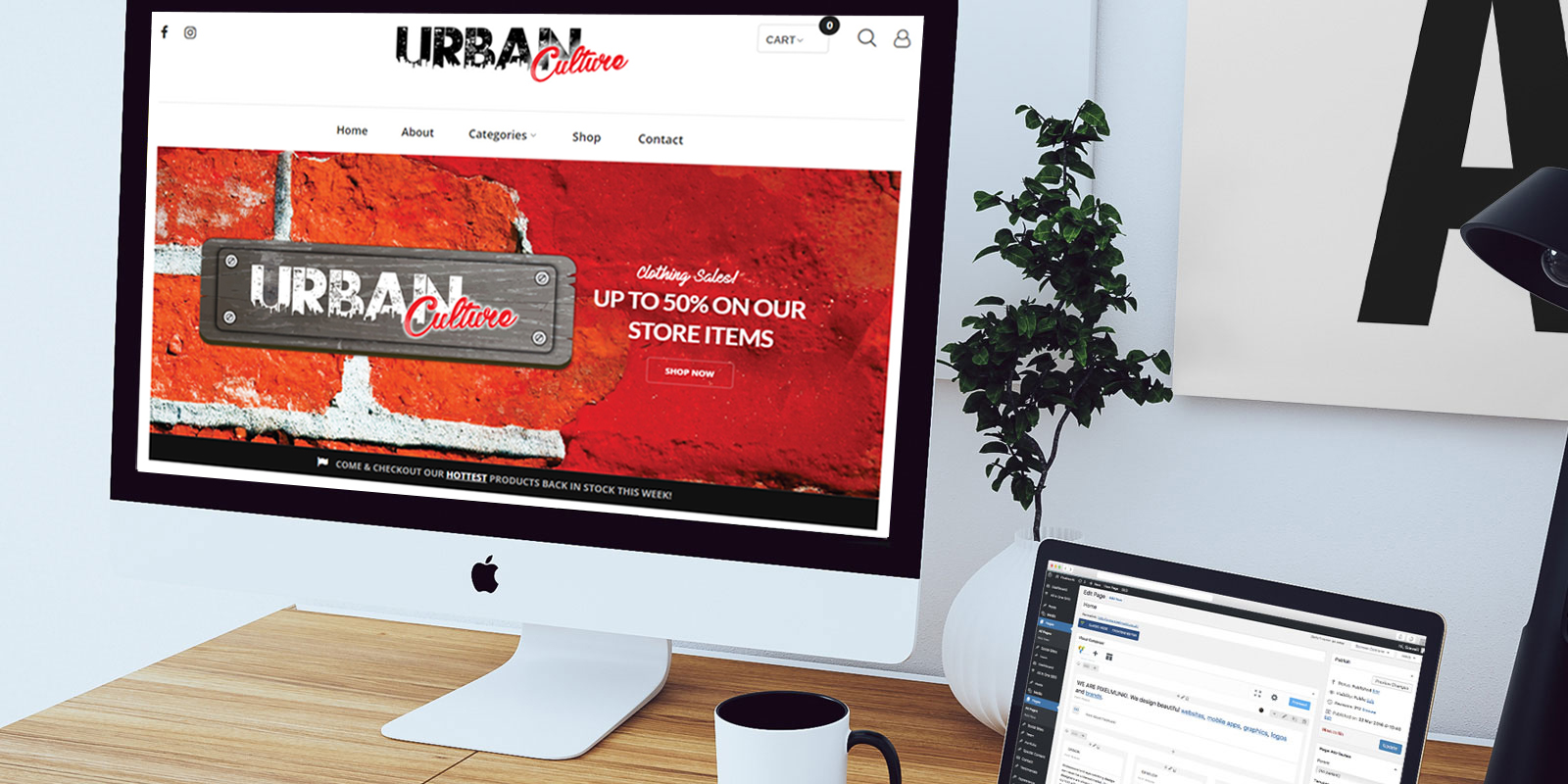 Website Design in Cape Town